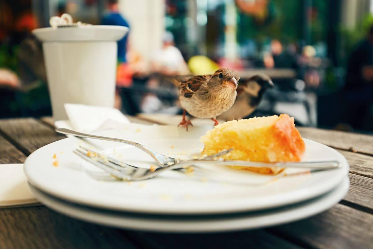 Вісім перевірених способів побороти голод