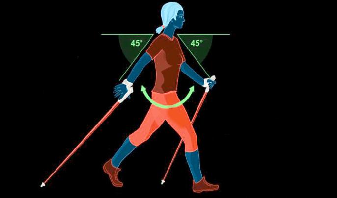 Скандинавська ходьба – у чому користь? Правильна техніка скандинавської ходьби